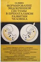 Формирование эндокринной системы в пренатальном развитии человека (БУ). Левина С.Е.. Медицина