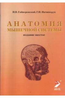 Анатомия мышечной системы 6-е изд.. Гайворонский И.В. Ничипорук Г.И.. Элби-СПб