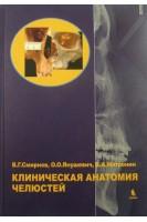 Клиническая анатомия челюстей. Смирнов В.М.. Бином